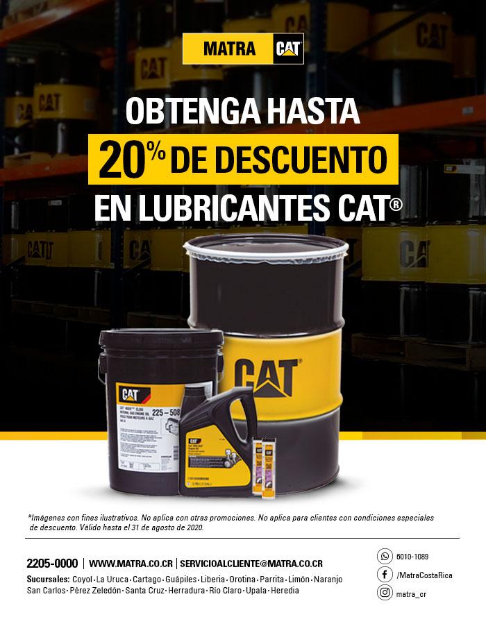 lub-cat